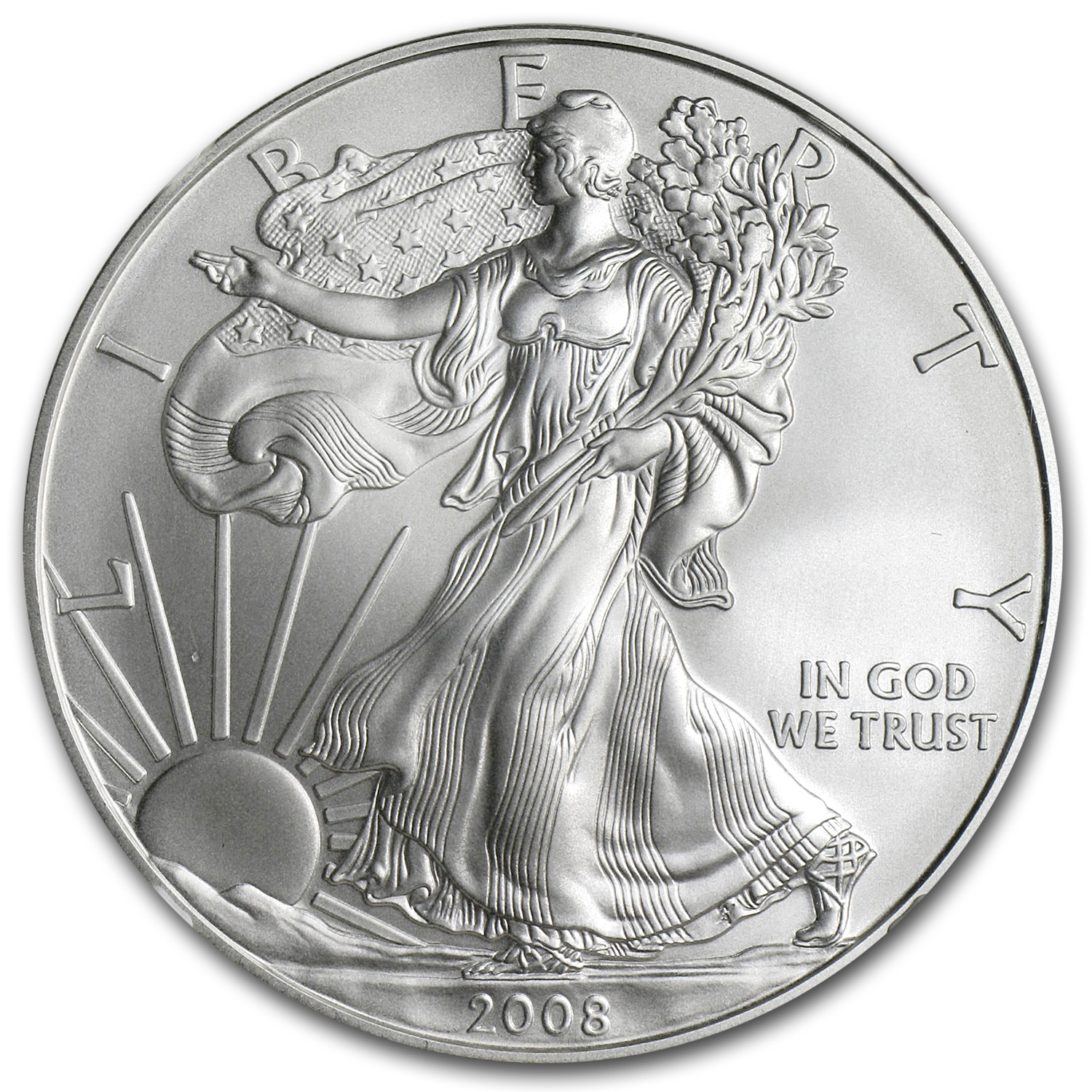 2008-W (Burnished) Silver American Eagle MS-69 NGC